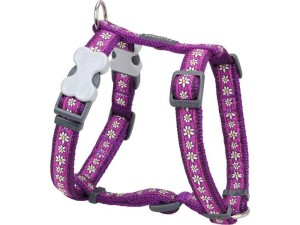daisy_chain_purple-800x600