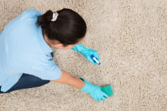 45165920 - young woman cleaning carpet with detergent spray bottle and sponge