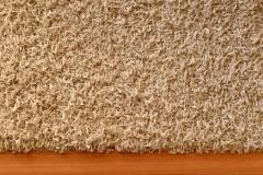 34159293 - a close up shot of a floor rug